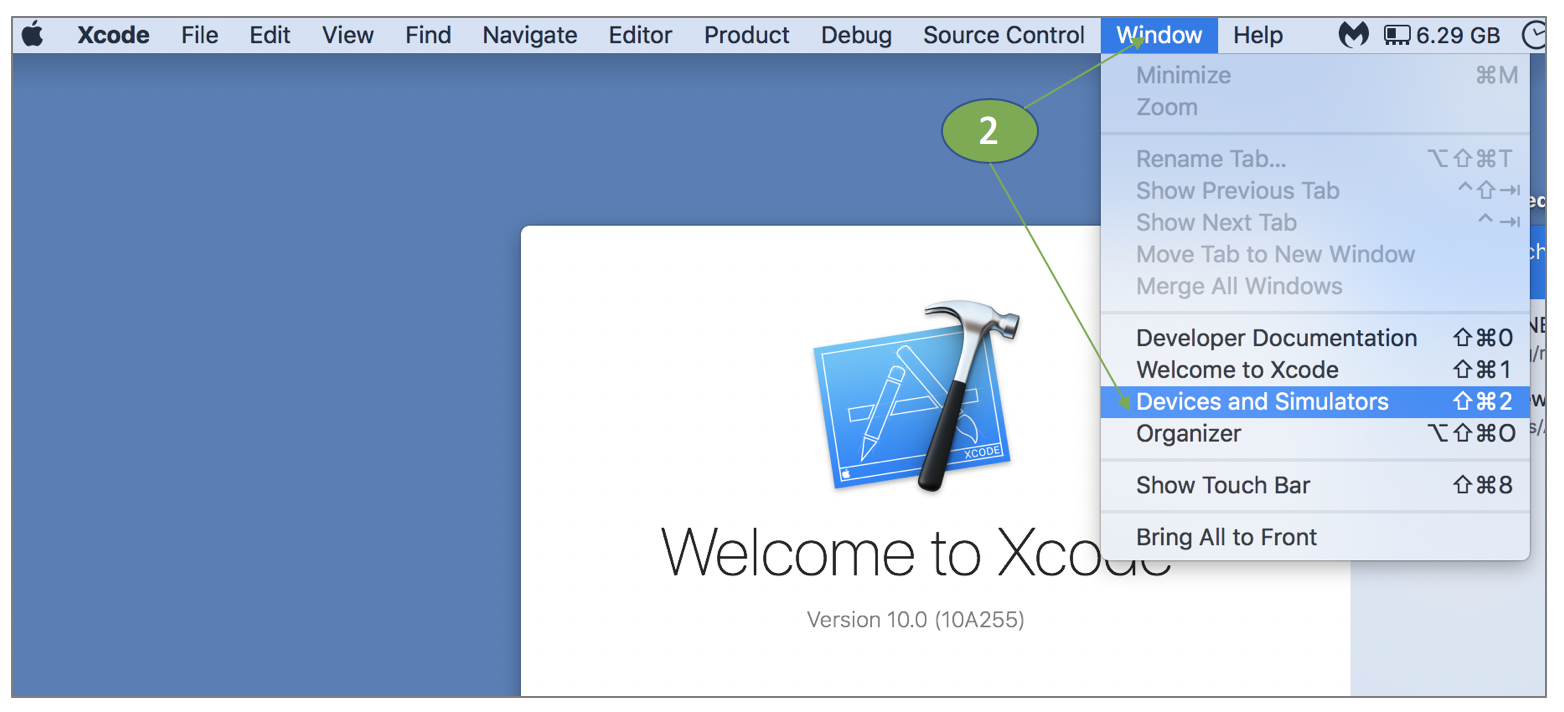 XCode Console