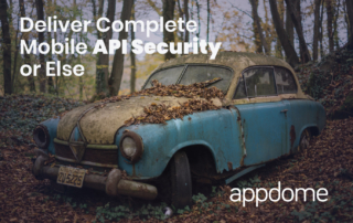 Deliver Complete Mobile API Security