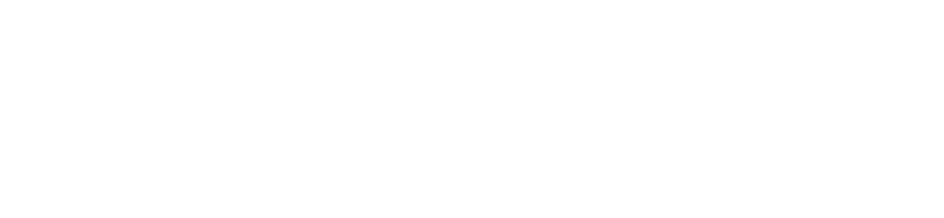 Modo Logo W